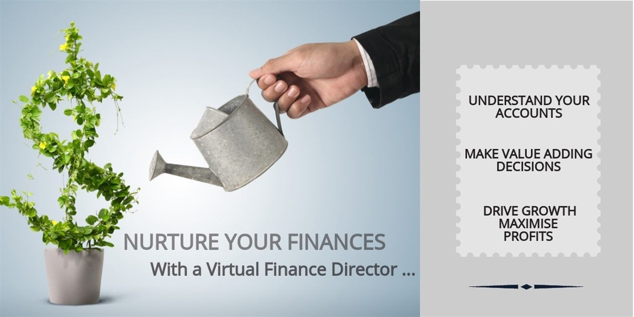 Virtual Finance Director - Personal Assistant/PA Service - Business support - Admin assistant - Shmunky